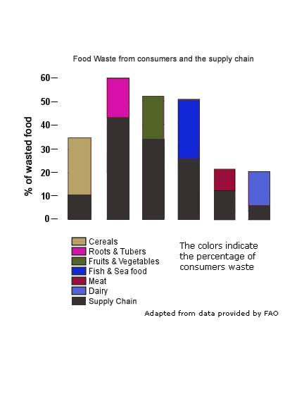 2011. Global food losses and food waste – Extent, causes and prevention. Rome