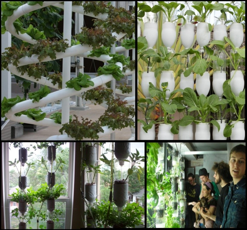 Growing vegetables in small spaces natural selections - Growing vegetables in a small space concept ...